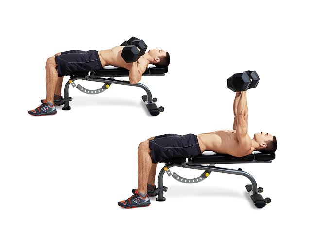 Dumbbell Bench Press Exercises - Onthebuzz