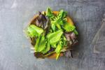 गार्डन से टेबल तक: स्वादिष्ट और स्वास्थ्यवर्धक पत्तेदार साग के बारे मे जाने