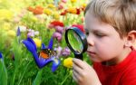 Environmental education in preschoolers